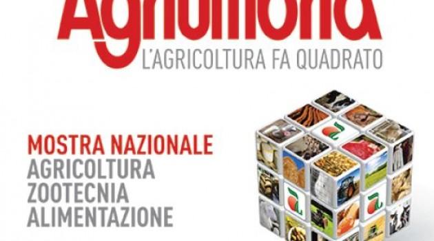 Agriumbria 2013