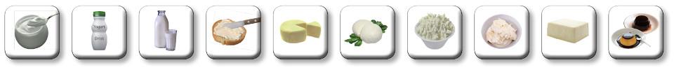 Prodotti realizzabili da Milk & Cheese